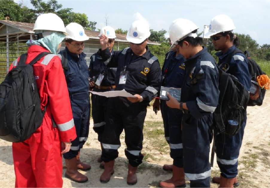 Program of Environmental Consulting and Service